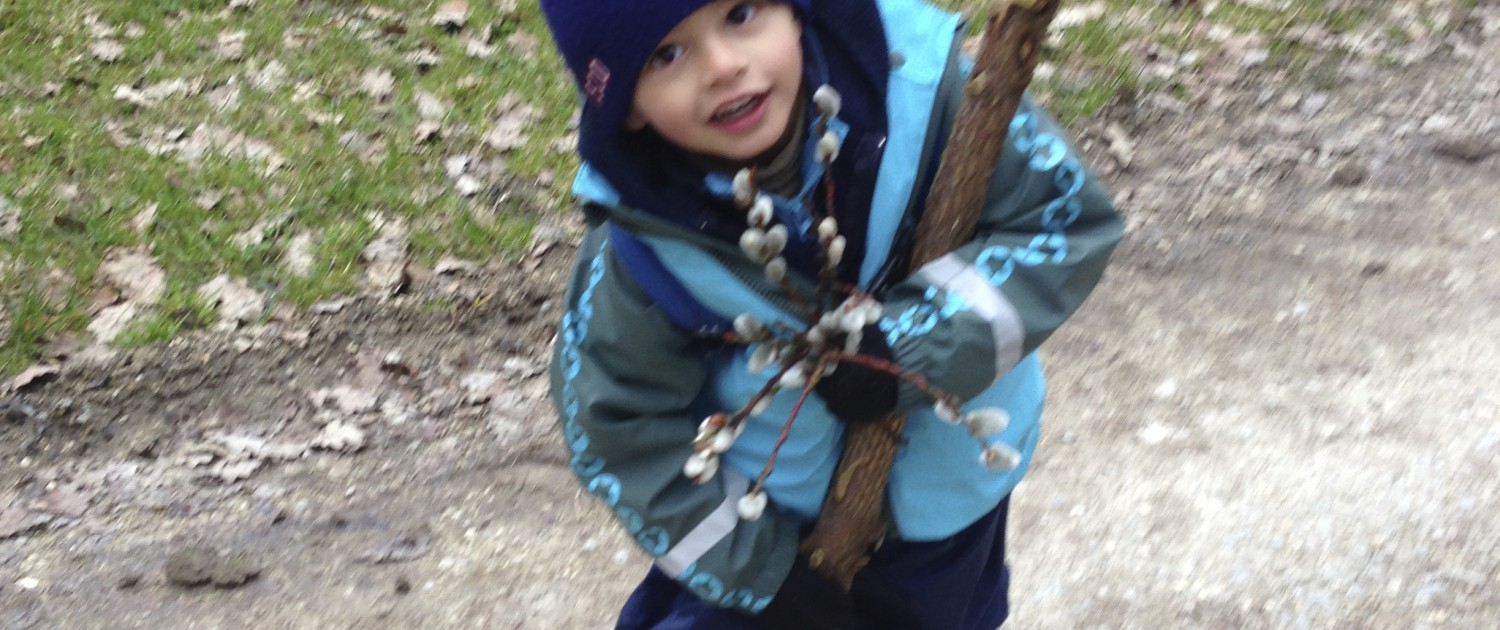 diego oussywillow stick