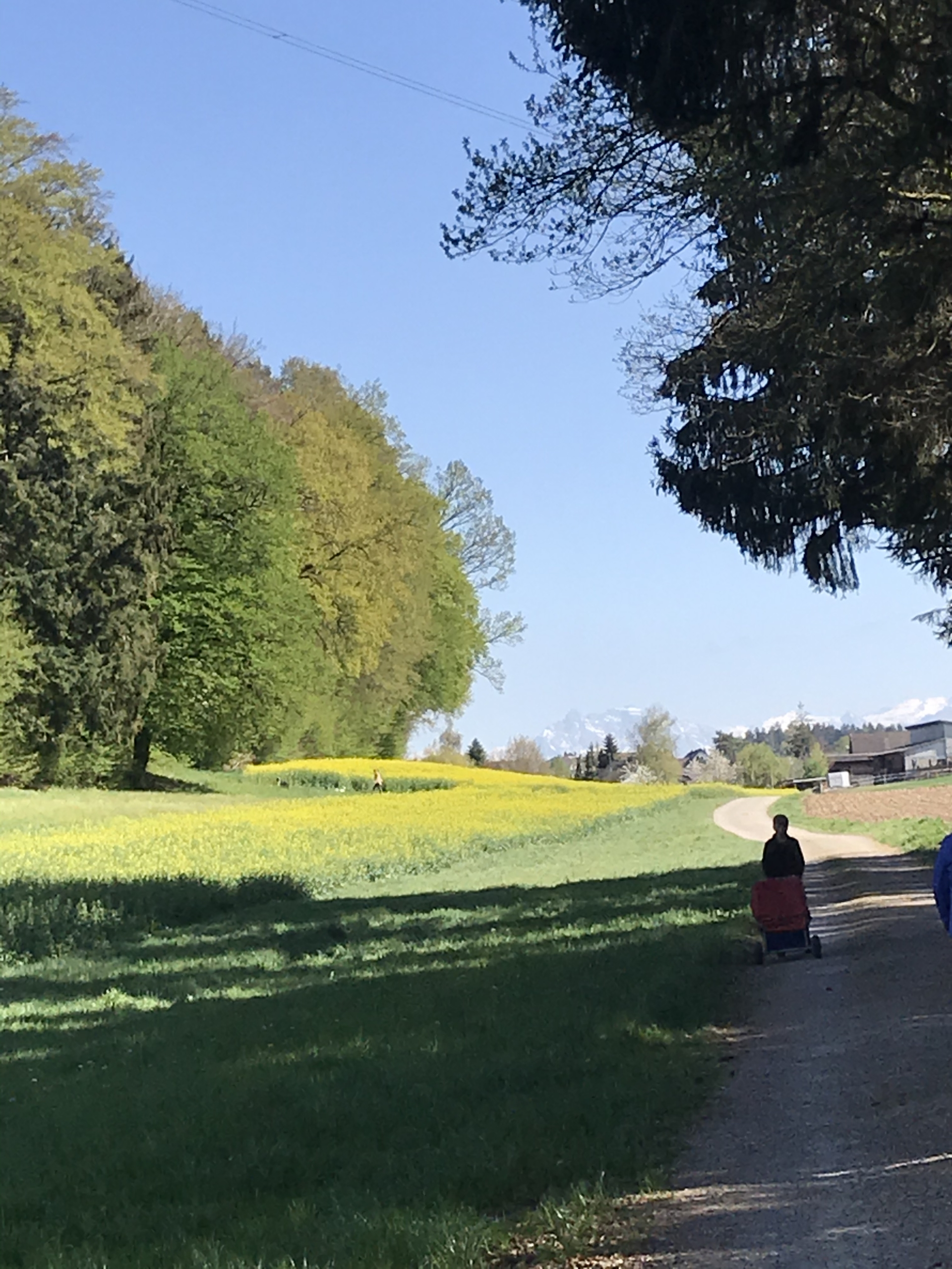 Bilingual Spring Holiday Adventure Day